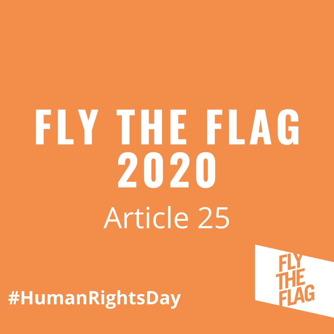GTG Workshop: Fly the Flag 2020