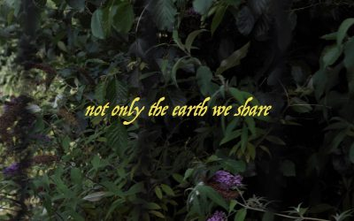 not only the earth we share – Sol Archer