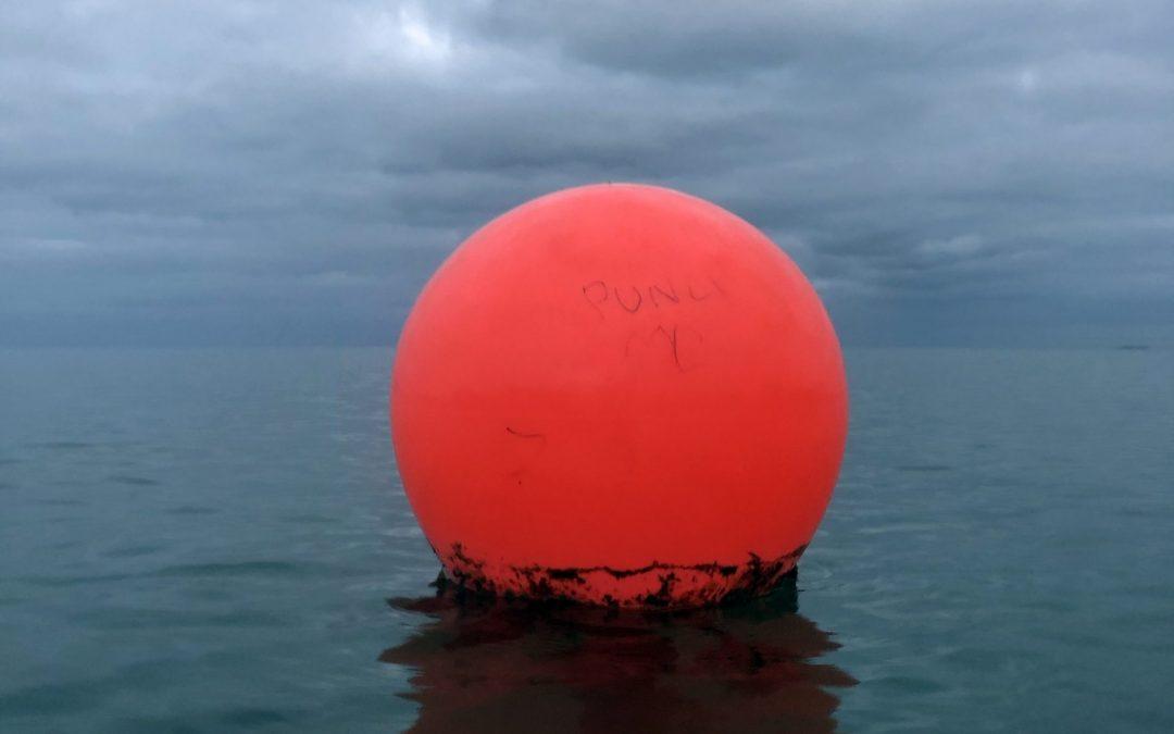 Paul Moore's sea swimming inspiration